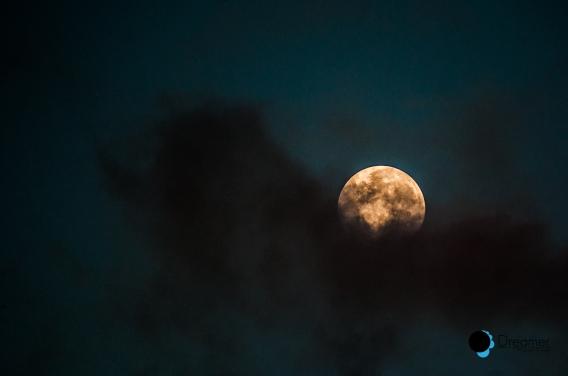 Moon-Luna-Dreamer-Efrain Garcia3