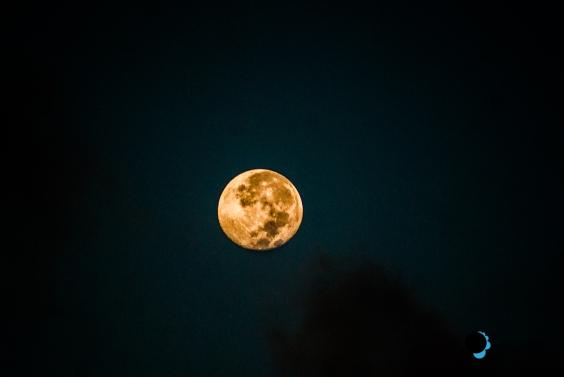 Moon-Luna-Dreamer-Efrain Garcia4
